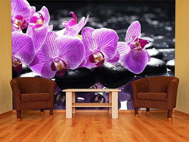fototapeta stenska fototapeta feng shui ftfs024. Black Bedroom Furniture Sets. Home Design Ideas